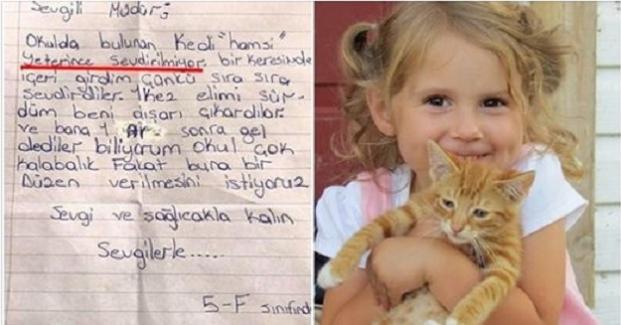 Okuldaki Kediyi Sevdirmeyenleri Müdüre Dilekçeyle Şikayet Eden İlkokul Öğrencileri