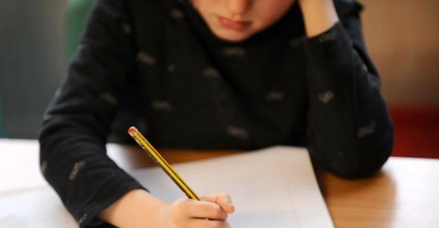 Türkiye'de Ebeveynlerin Sadece Yüzde 24'ü Devlet Okullarına Güveniyor