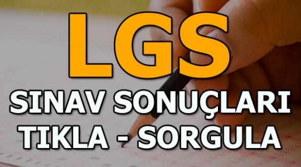 LGS Sonuçları MEB Tarafından Açıklandı