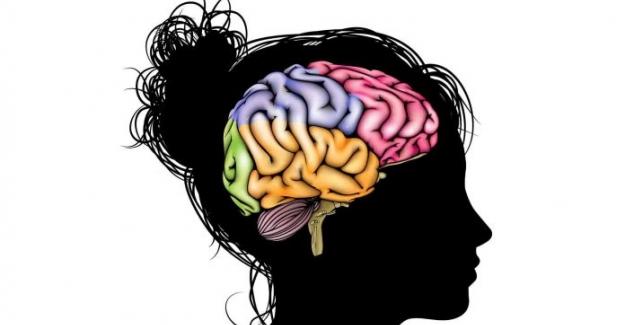 Ergen Beyninin İnanılmaz Öğrenme Potansiyelini Kullanmak