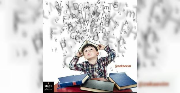 """Pisa direktörü eğitim sistemimiz için: """"Yeni dünyada yaşamayı sağlayan gerekli becerileri öğretmiyorsunuz."""" demişti."""