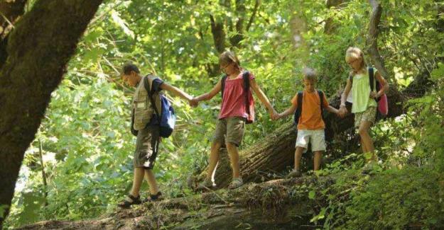 Bu Okulda Sınıf Yok; Derssiz ve Ödevsiz Bir Doğa Okulu