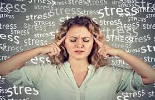 Öğretmen Stresinin En Önemli Nedeni