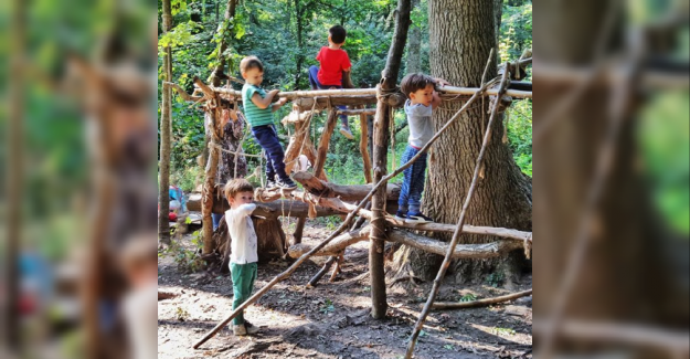 Orman Anaokulları Günümüz Gençliğini Büyük Faydalarla Sağlıyor