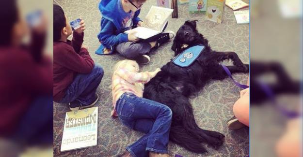 Çocuklar, Okuma Yazma Becerilerini ve Güvenlerini Artırmak için Köpeklerine Yüksek Sesle Kitap Okuyor