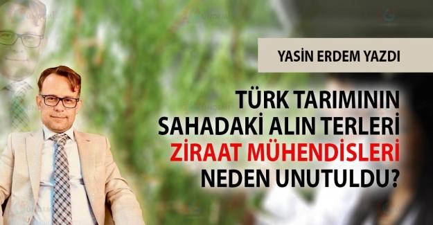 Türk Tarımı Sahadaki Alın Terleri Ziraat Mühendisleri Neden Unutuldu?