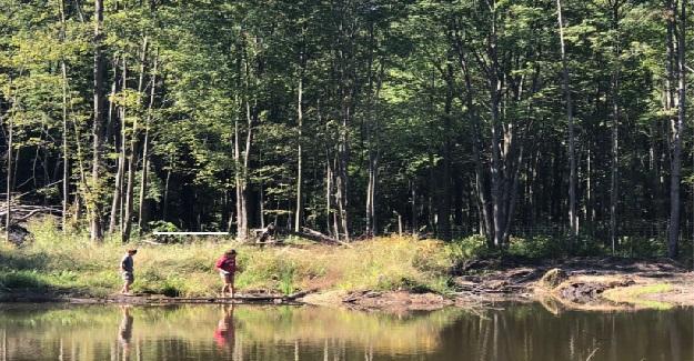 Çocuğunuza Doğayı Kullanarak Akademik Olarak Yardım Etmenin 3 Kolay Yolu