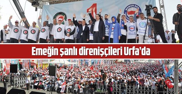 Emeğin şanlı direnişçileri Urfa'da