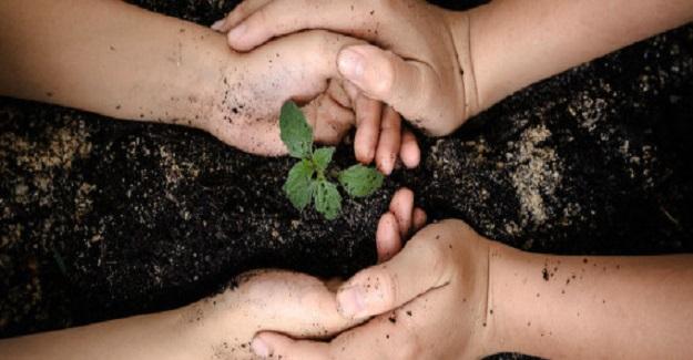 Neden Çocuklarınızla Bahçede Çalışmalısınız?
