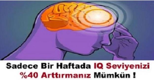 IQ Seviyenizi Bir Haftada Yüzde Kırk Arttıracak Bomba Yöntem!
