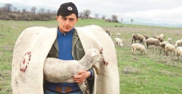 Köyünde Çobanlık Yapan Emre Polat Üniversite Sınavında Birinci Oldu