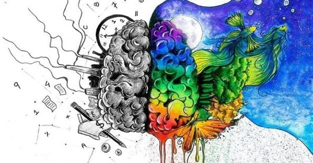 Sağ Beyin Temeli Olan Eğitim Sisteminin Avantajları Nelerdir