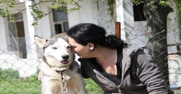 İngilizce Öğretmenliğinden İstifa Edip, Hayatını Sokak Hayvanlarına Adayan Melek