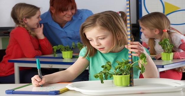 Okullarda Bitki Yetiştirmenin Öğrencilere Sağladığı Faydaları