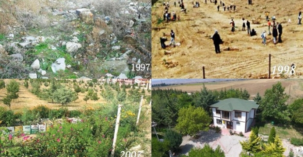 Amasya'da bir grup emekli, 22 yılda çöplüğü küçük bir ormana çevirdi