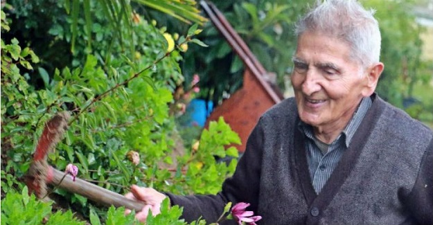 Bulgaristan Göçmeni 83 Yaşındaki Emekli Öğretmen Tek Başına 360 Bin Fidan Dikerek Orman Yaptı
