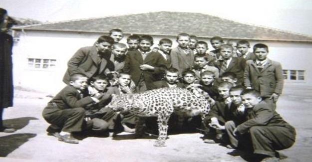 Buldan'ın Kurudere köyünde ilkokul öğrencileri Ölü leopar.ile Denizli 1954