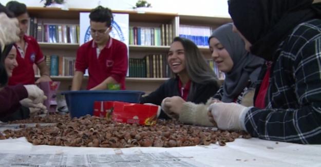 Öğrenciler, kabuğundan ayırdıkları fındıkları fırında kavurarak sattı. Elde ettikleri geliri TSK'ya bağışladı