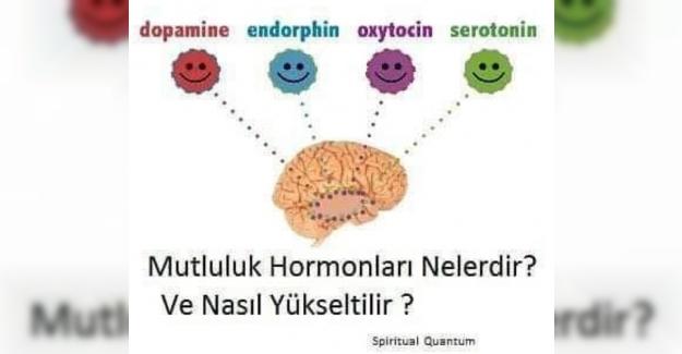 Mutluluk hormonları nelerdir? Nasıl yükseltilir? Eksikliğinde nasıl hissederiz?