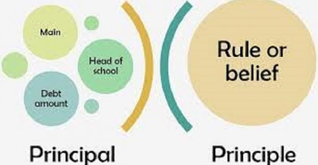 Principle ve Principal arasındaki fark nedir?