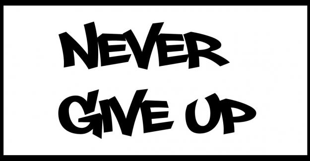 Never give up ne demek
