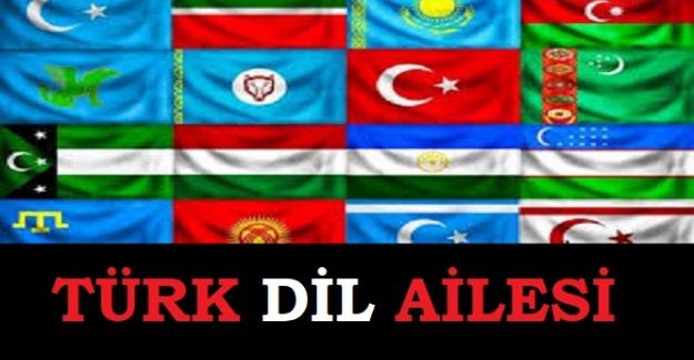TÜRK DİLLERİ AİLESİ