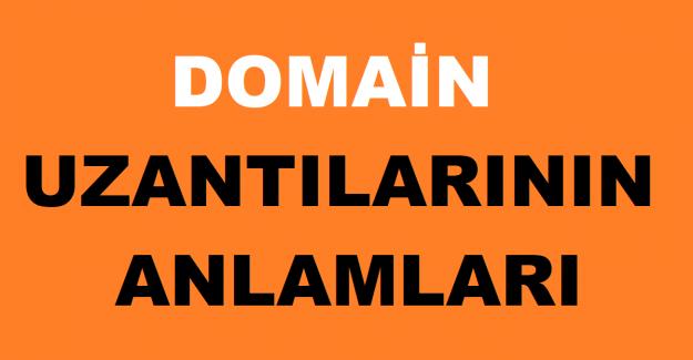 Domain Uzantılarının Anlamları