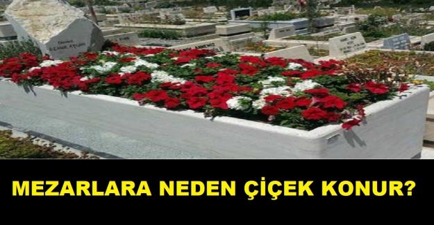 Mezarlara neden çiçek konulur?