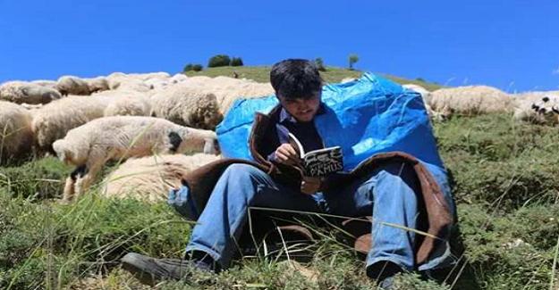 Çobanlık Yaparak TEOG'da Türkiye Birincisi Oldu, Şimdide Tilburg Üniversitesi İçin Hazırlanıyor