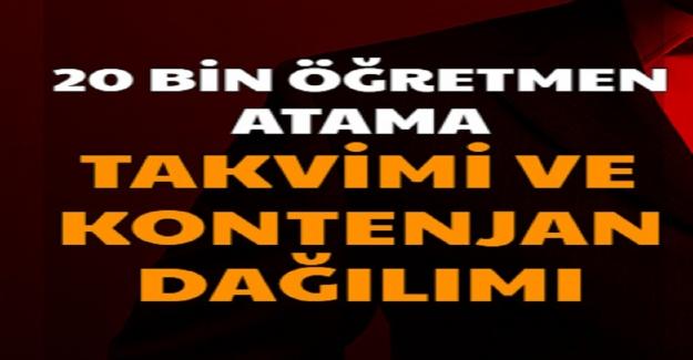 20 Bin Öğretmen Atama Tercihlerinde, Kontenjan Dağılımı