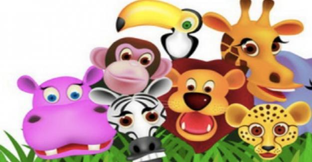 Hayvanları Koruma Günü Etkinlikleri Neler?