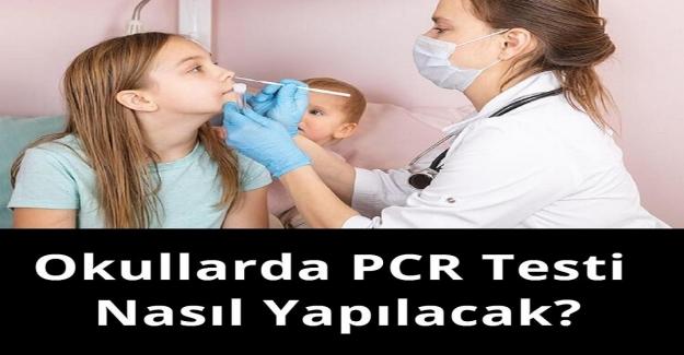Öğrencilere PCR Testi Nasıl Yapılacak?