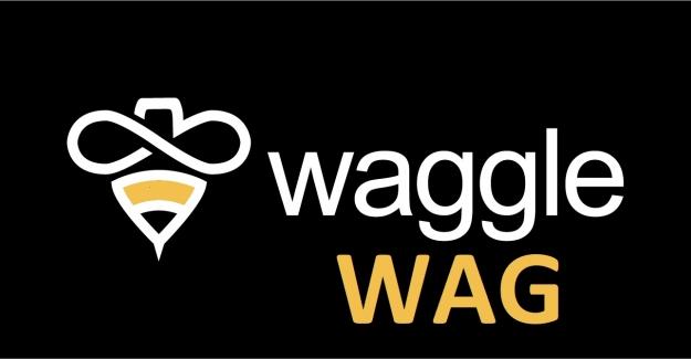 Waggle Network (WAG) Token Nedir? Waggle Network (WAG) Coin Geleceği