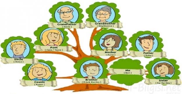 İngilizce Soy Ağacı Görselleri