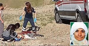 Korkunç Vahşet, Sokak köpekleri yaşlı kadını öldürdü. Çoban yardıma koştu ama