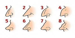 Sizin Burnunuz Hangisi? Burun Tipine Göre Karakter Analizinizi Yapıyoruz