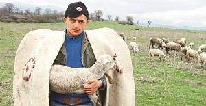 Köyünde Çobanlık Yapan Emre Polat...