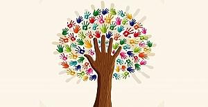 Zorbalığı Kaldırmaya Yönelik Bir Okul Kültürü Nasıl Oluşur?