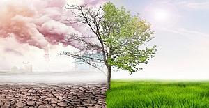İtalya, İklim Değişikliği Eğitimini Zorunlu Hale Getiriyor