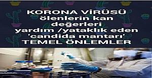 Tüm İnsanlığı Tehdit Eden Corona Virüsü Hakkında Mutlaka Alınması Gereken Önlemler?