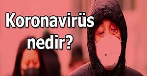 Korona virüsü nedir ? İşte işin aslı...