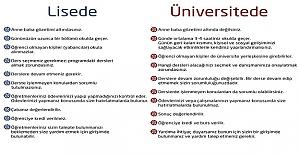 Öğrencilerin Lisede Ve Üniversitede Yaşadıkları