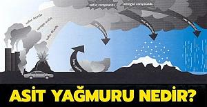 Asit Yağmuru Nedir? Asit Yağmurları Zararları Ve Sonuçları