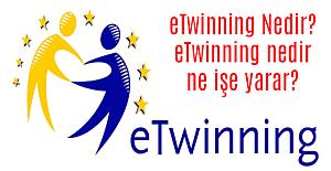 E Twinning Nedir? Ne İşe Yarar?