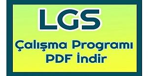 8. Sınıf LGS Türkçe Kaynak Kitap Takip Çizelgesi İndir