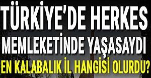 Türkiye'de Herkes Kendi Memleketinde Yaşasaydı En Kalabalık İl Hangisi Olurdu? İşte Cevabı