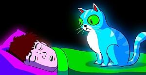 Kedinizle Aynı Yatakta Yatmak Doğru mu?