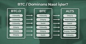 Bitcoin Dominans Nasıl İşler?