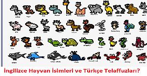 İngilizce Hayvan İsimleri ve Türkçe Telaffuzları?