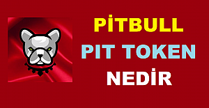 Pitbull (PIT) Coin Nedir? Pitbull (PIT)...